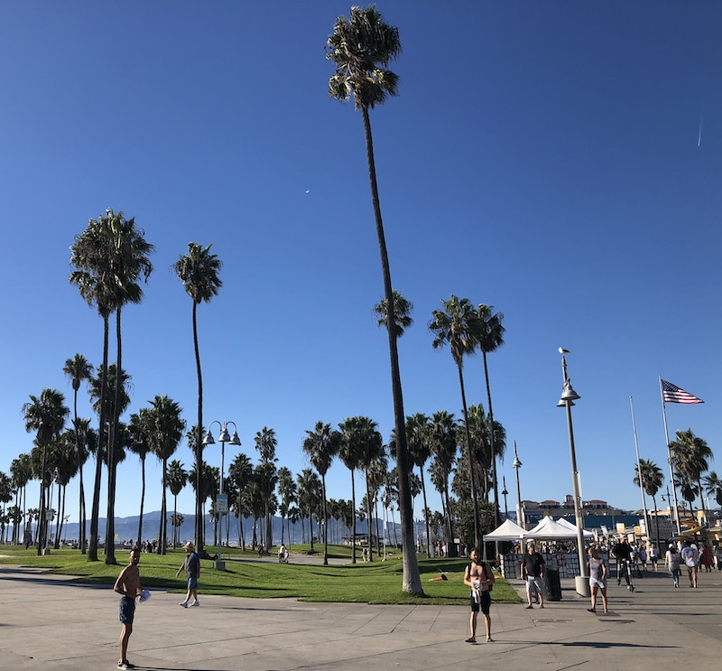 Los Angeles Off Road - Visite de Venice Beach#12